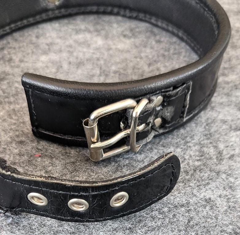 Das Halsband